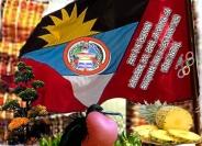 Antigua & Barbuda Peace quilt